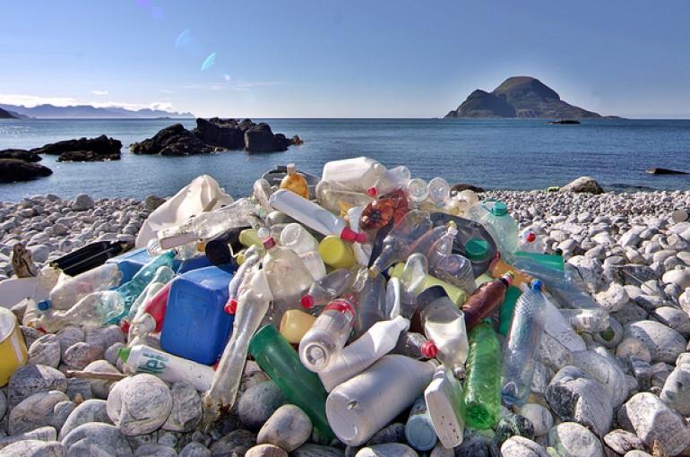 Dampak Plastik PadaLingkungan